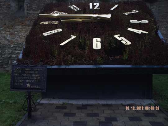 годинник із квітів взимку